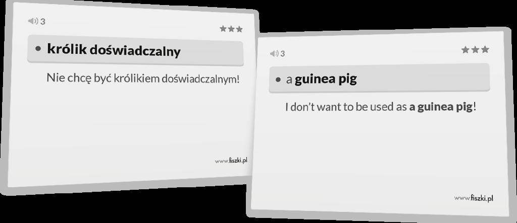 królik doświadczalny po angielsku