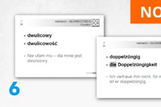 FISZKI - język niemiecki - Słownictwo 6
