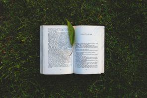 jak nauczyc sie czytac po angielsku